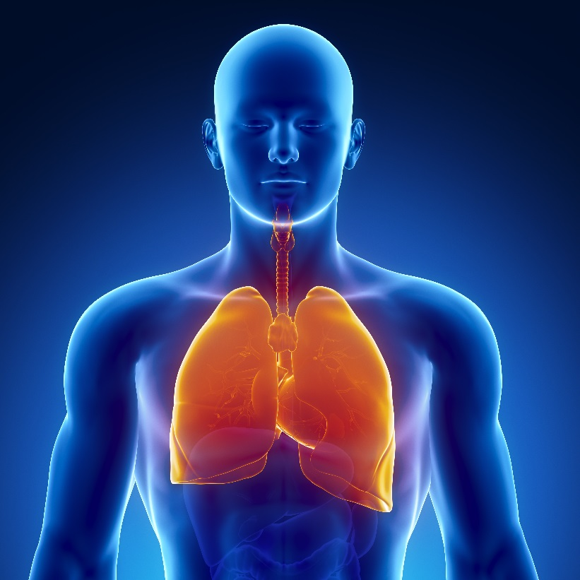 как избавиться от запаха спиртного изо рта