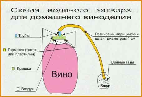 водяной затвор для домашнего вина