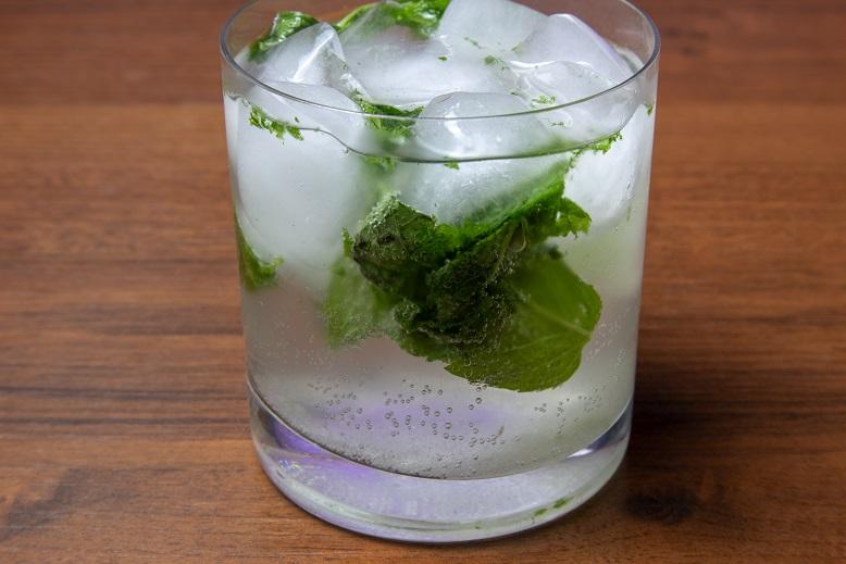фото мохито с водкой