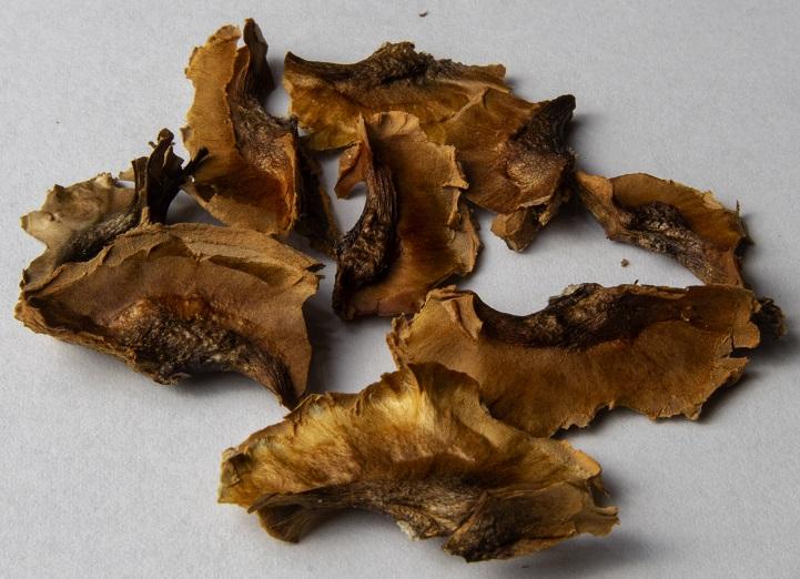 фото перегородок грецких орехов