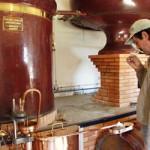 производство коньяка