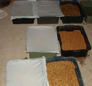 поддоны для пшеницы