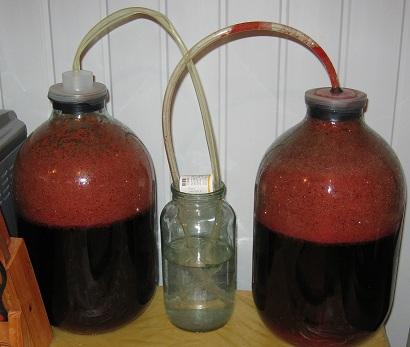 вишневое вино под гидрозатвором