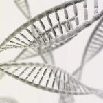генетическая расположенность к алкоголизму