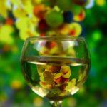фото белого вина в бокале