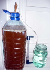 фото гидрозатора для медовухи