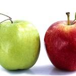брага из яблок для перегонки