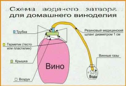 гидрозатвор для сухого виноградного вина