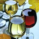 как приготовить сухое вино из винограда
