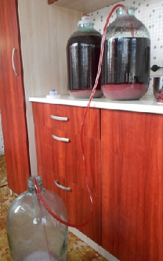 снятие вина с осадка (фото)