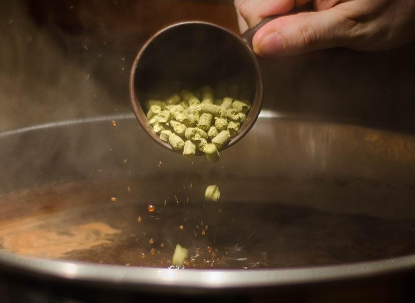 добавление хмеля в домашнее пиво