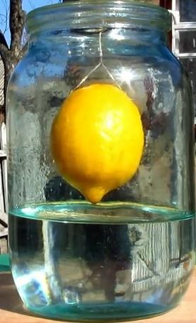 настаивание подвешенного лимона в банке