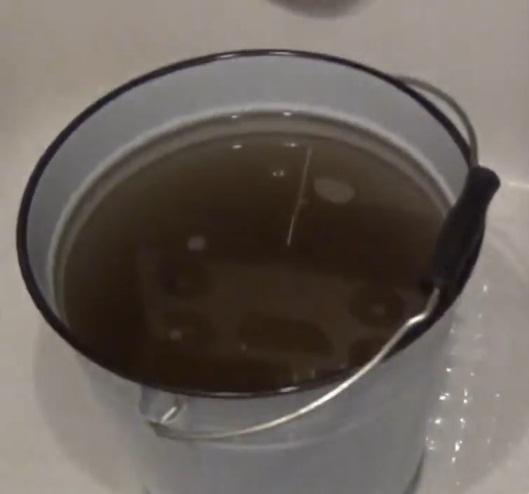 фото воды после вымачивания бочки