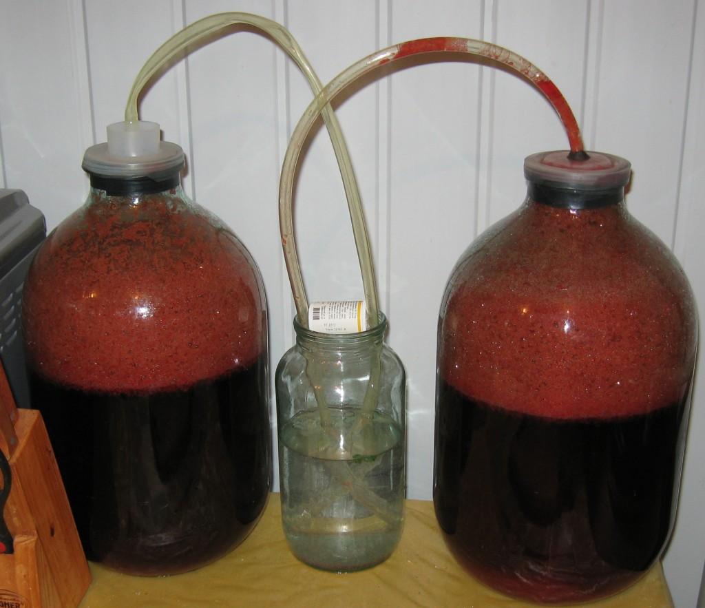 Вино в домашних условиях простой 36