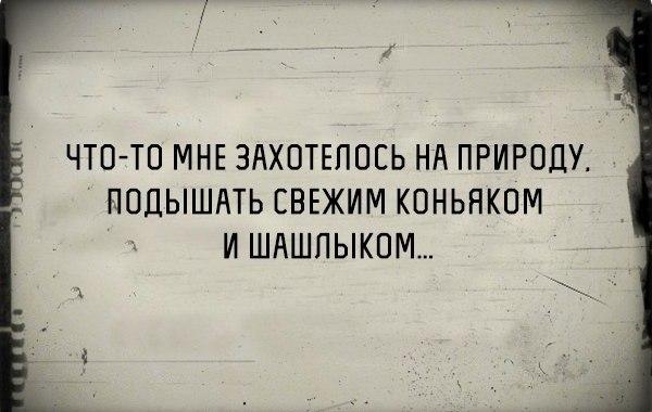 MpF0QDaoTfk