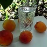 рецепт самогона из абрикос