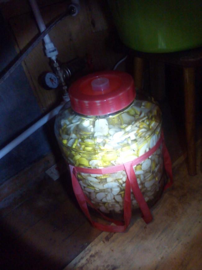 Сделать брагу из винограда в домашних условиях
