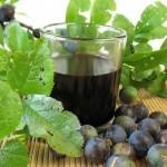 рецепты домашних терновых наливок