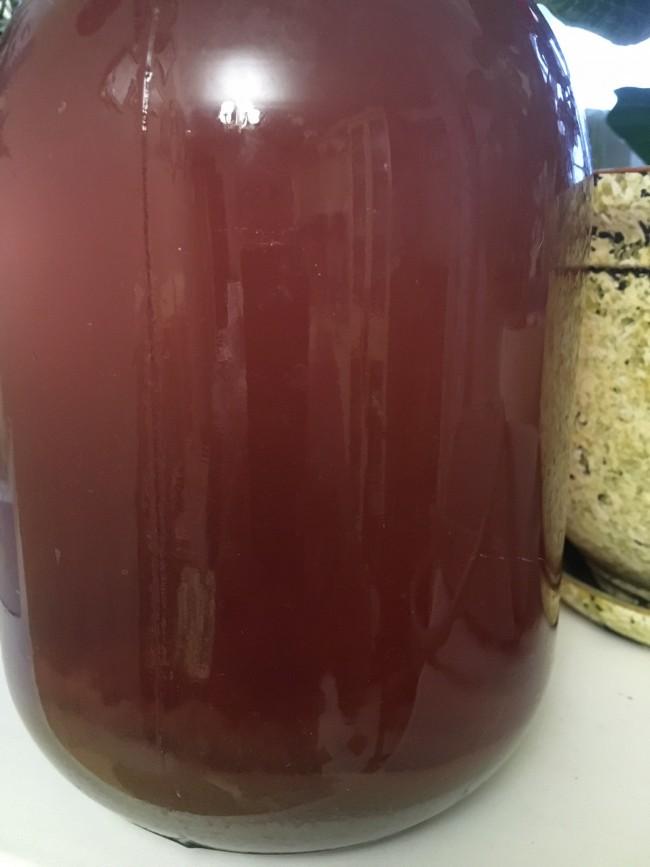 Вино из винограда без дрожжей в домашних условиях 637