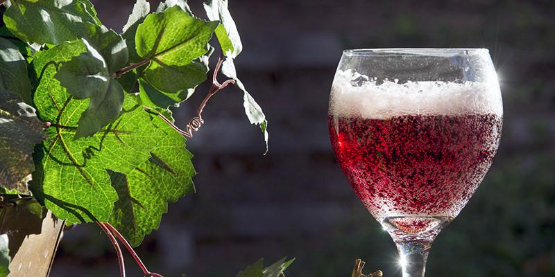 Игристое вино Ламбруско