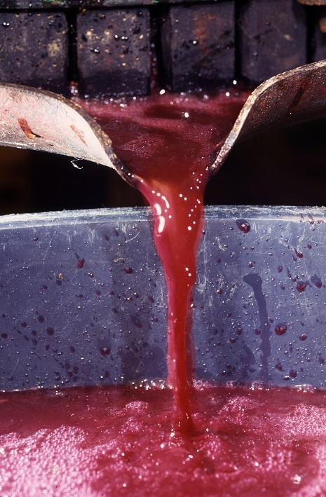 как делают вино Ламбруско