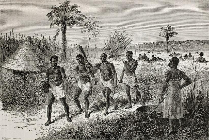 фото рабов на плантации сахарного тростника