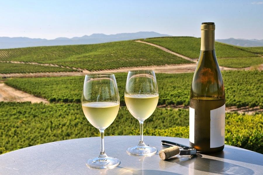 фото американского вина Шардоне