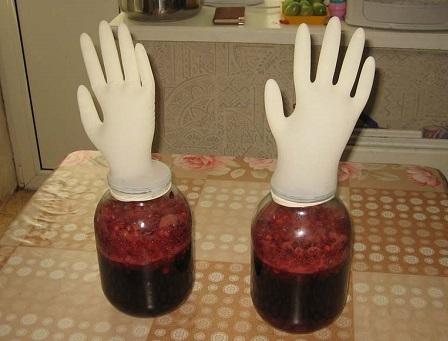 вино из жимолости под перчаткой