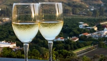 итальнское вино Пино Гриджио
