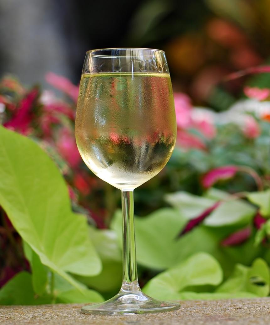 фото вина Пиго Гриджио в бокале
