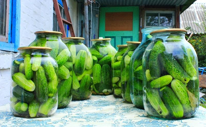 фото соленых огурцов с водкой