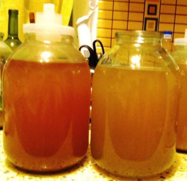 вино из в домашних условиях из винограда рецепт приготовления пошагово