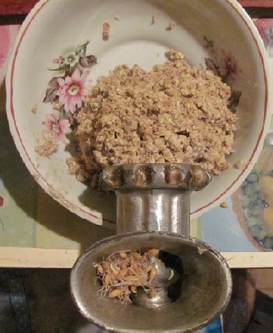 процесс измельчения зеленого солода мясорубкой