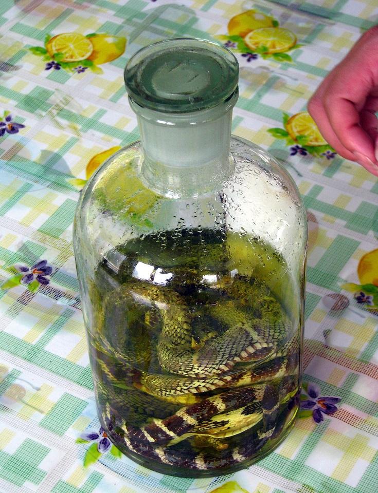 фото как пить водку со змеей