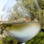 вино Гевюрцтраминер фото
