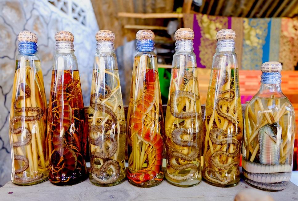 фото змеиного вина из Вьетнама