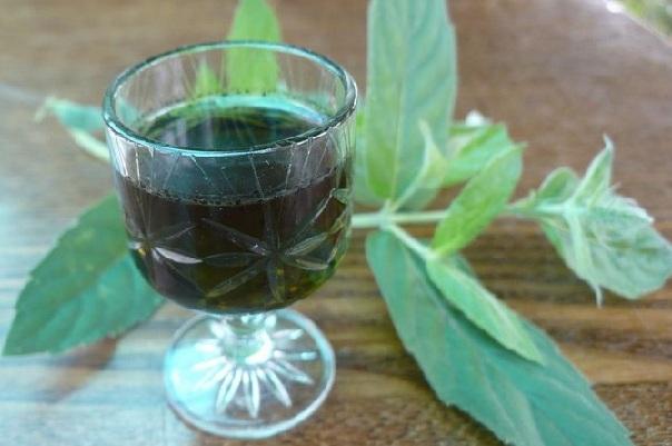 Настойка из мяты на спирту рецепт приготовления в домашних условиях