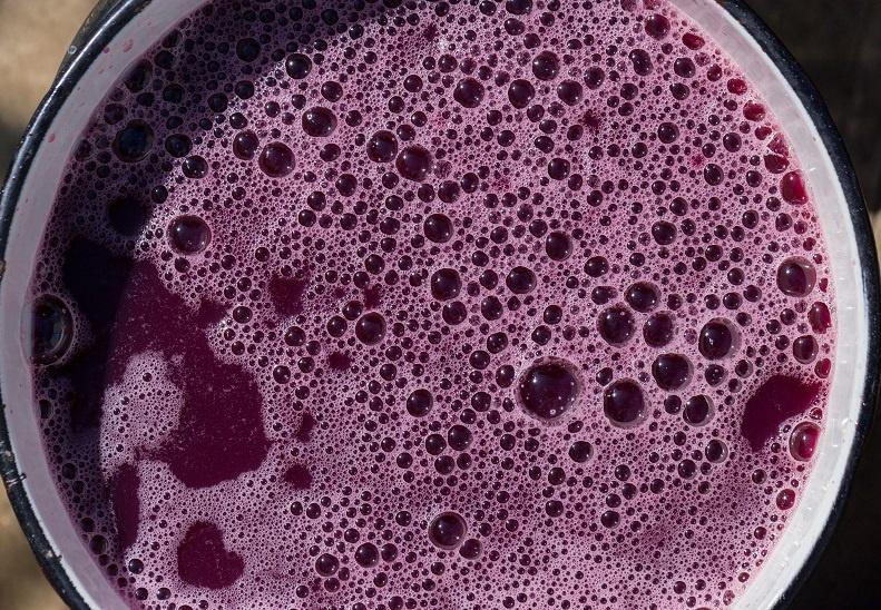 брожение вина из виноградного жмыха