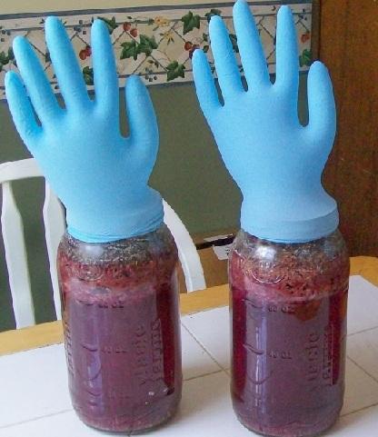 фото брожения вина из жмыха винограда под перчаткой