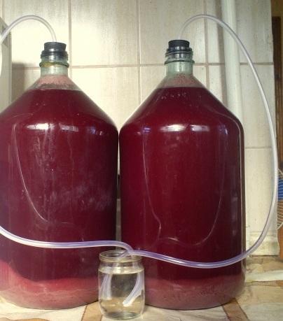 приготовление красного сухого вина в домашних условиях из винограда