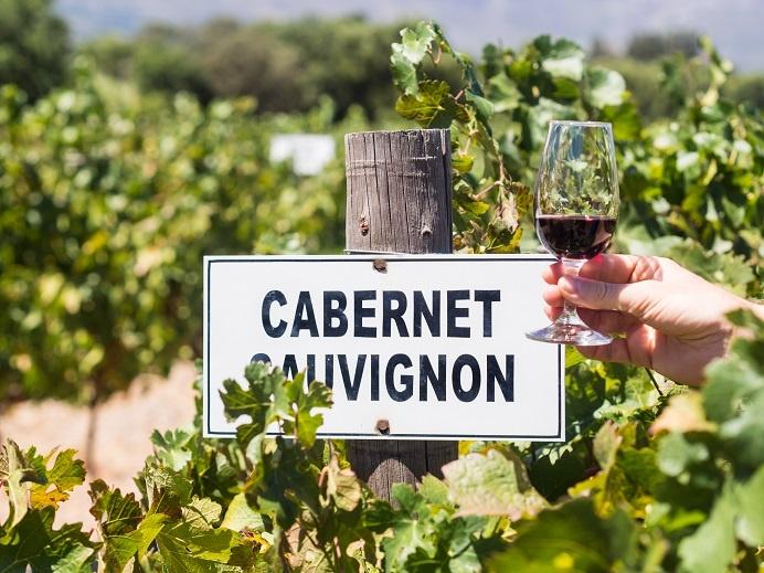 фото красного вина Каберне Совиньон