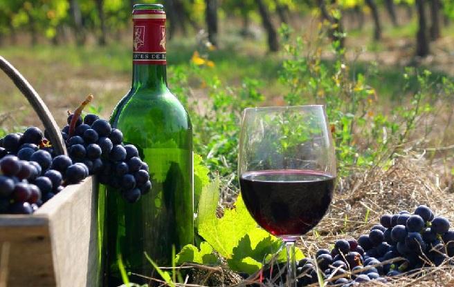 http://alcofan.com/wp-content/uploads/2016/10/vino-kaberne-sovinon-foto.jpg