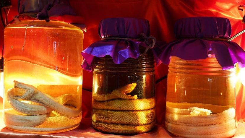 фото авамори со змеей