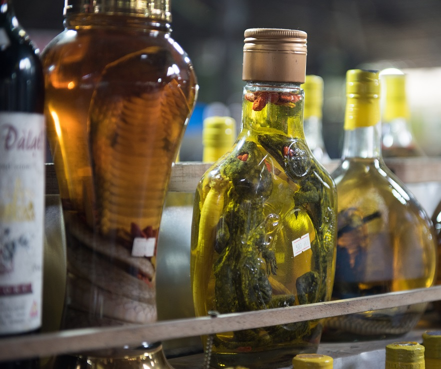 фото тайской алкогольной настойки со змеями