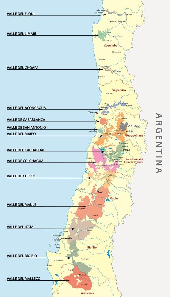 винодельческие регионы Чили