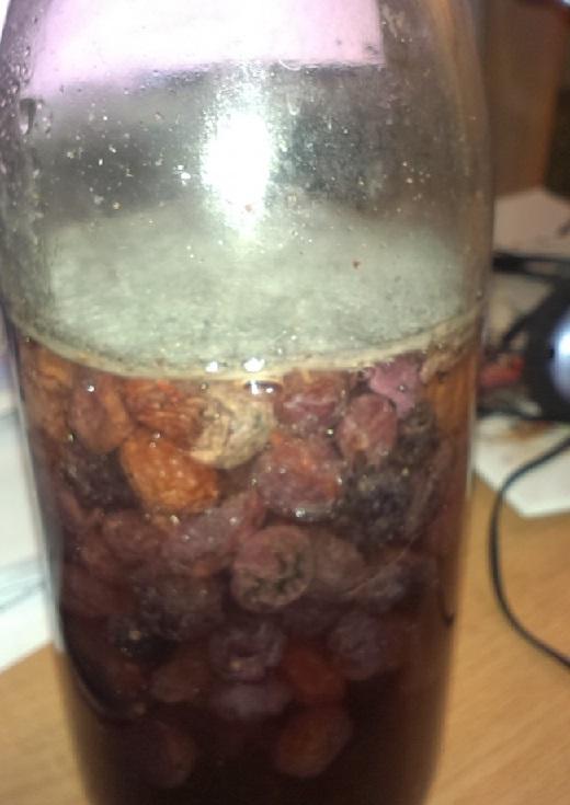 фото домашних винных дрожжей из изюма