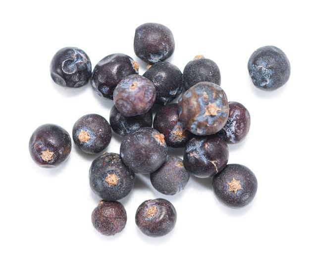 фото ягод можжевельника для женевера