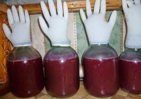 фото брожения браги из ежевики