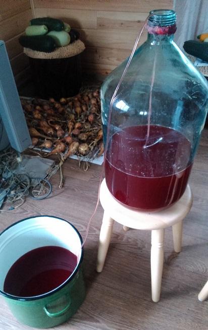фото как правильно снимать домашнее вино с осадка