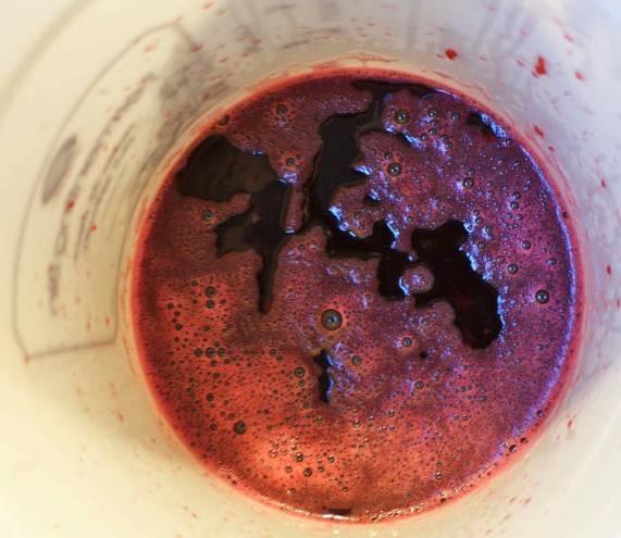 фото забродившего вишневого сусла